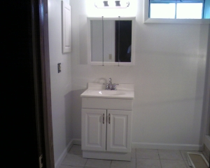 Basement sink and vanity unit